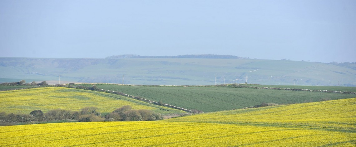 View over the Dorset countryside